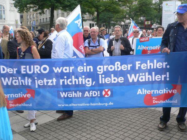 AfD-Demo-Hamburg6