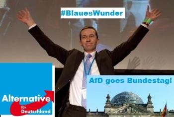 AfD-goes-Bundestag-2