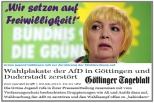 """""""Grüne Freiwilligkeit"""" - Demokratie"""